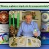 Tarocista Astrolog Józef
